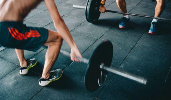 Triceps zapoznaj się z tym mięśniem